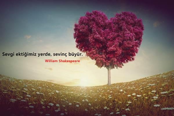 Sevgi-İle-İlgili-Sözler