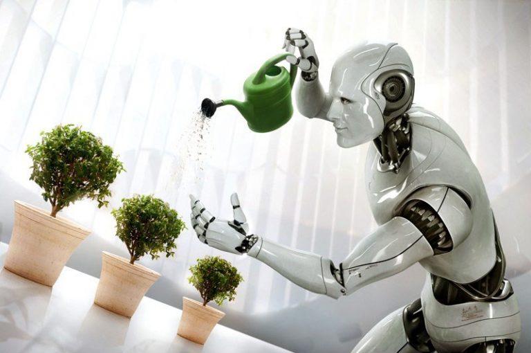 Как запрограммировать форекс робота на